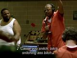 Snitch Bitch
