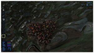 Aestus - Confetti Moss Scraping