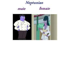 Male,female,neptunian