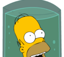 Homer Simpson's head