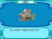 Human-Faced Fish