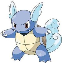 Pokemon 008