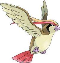 Pokemon 17