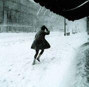 Miniskirts in snow storm