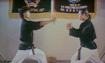 Kung Fu Brothers