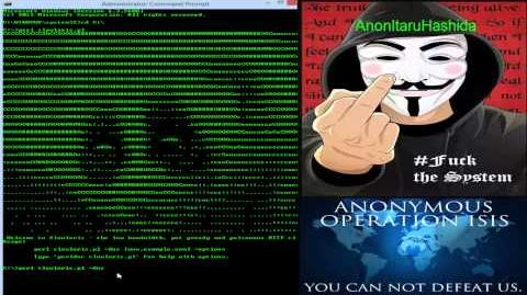 Anonymous Operation Ice ISIS Part 2 ( OpiceISIS) Kali Linux DDOSing, and Windows DDOSing HD