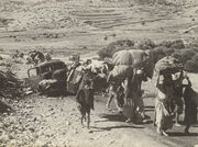 Refugees in Galilee