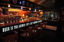 ThePubBerlin bar