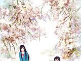 Kimi ni Todoke (Sawako)