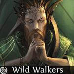 WildWalkers