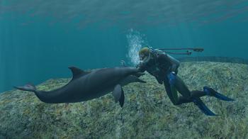 Bottlenose Dolphin Partner (EO)
