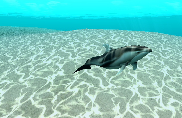 The Pacific White Sided Dolphin With A Fin Is One Of Partners Player Can Befriend In Endless Ocean Blue World