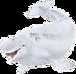 Beluga png
