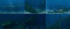 Shipwreck Collage