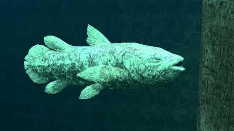 Endless Ocean 2 legendary creature walkthrough
