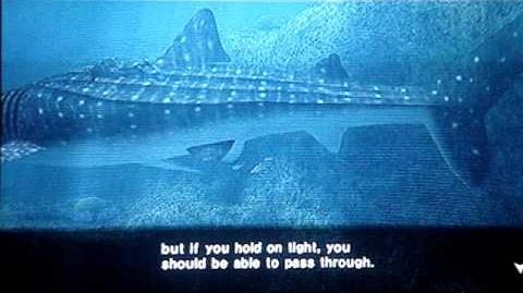 Endless Ocean - Whale Shark Cutscene