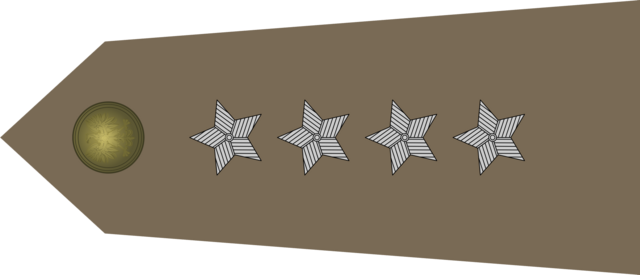 File:Polish Army CPT.png