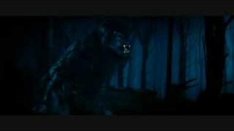 Favourite Werewolf Transformation - High Quality!