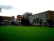 AIIMS central lawn