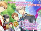 The Cinderella Contract