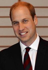 Prince William February 2015