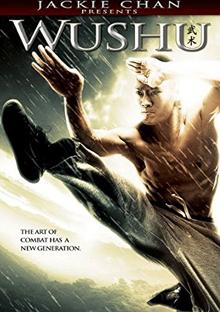 Wushu 2010 DVD Cover