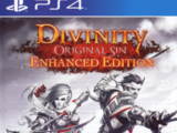 Divinity: Original Sin: Enhanced Edition (2015)
