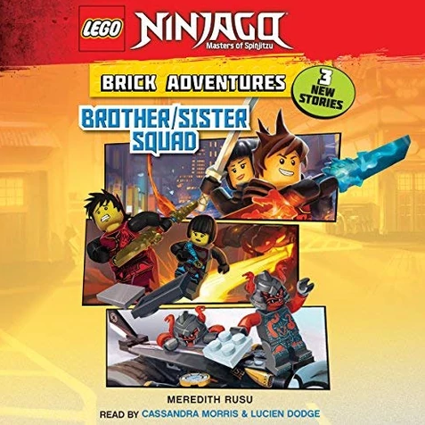 42e0a6d567448c LEGO Ninjago: Masters of Spinjitzu: Brick Adventures: Brother/Sister ...