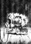 Enigma Skull