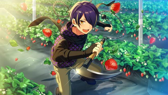 (Berry Monster) Shinobu Sengoku CG