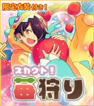 Strawberry Picking Banner2