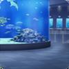 Aoumi Aquarium (Main Exhibit)