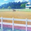 Horse Riding Club