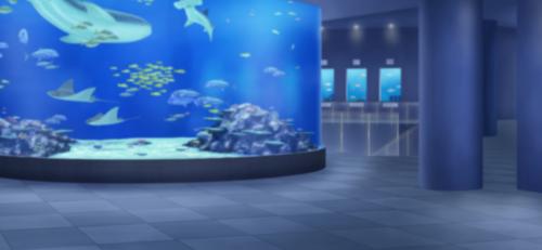 Aoumi Aquarium (Main Exhibit) Full