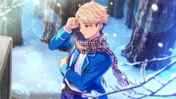 (Holy Knight of Silver) Arashi Narukami CG