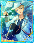 (Moonlight's Snowy Owl) Arashi Narukami Bloomed