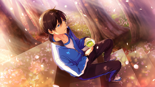 (Fluttering Cherry Blossoms) Hokuto Hidaka CG