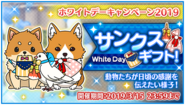 2019 White Day Campaign Twitter Banner