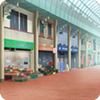 Shopping District