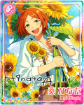 (You of Sunflowers) Hinata Aoi Rainbow Road Bloomed