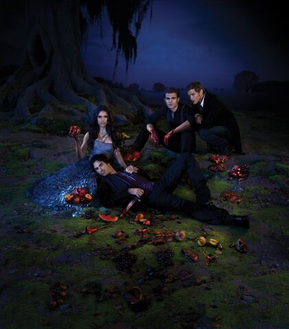 File:Season-3-Poster-the-vampire-diaries-25275004-1024-1166.jpeg