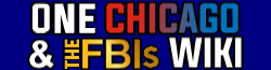 Chicago Franchise wordmark