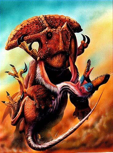 Velociraptor vs. ceratopsian