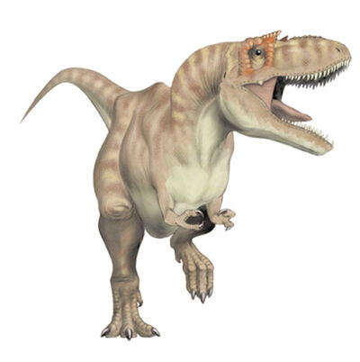 Albertosaurus libratus
