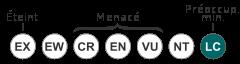 Status iucn3.1 LC-fr