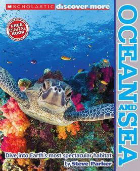 Ocean and Sea