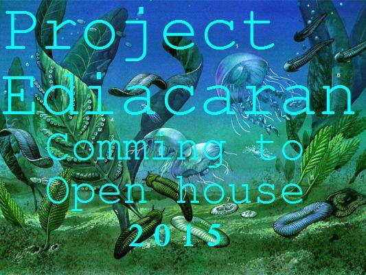 Project ediacaran 3