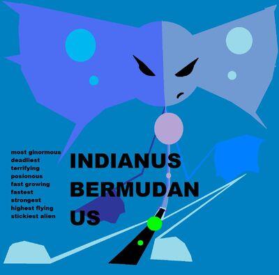 Indianus bermudanus