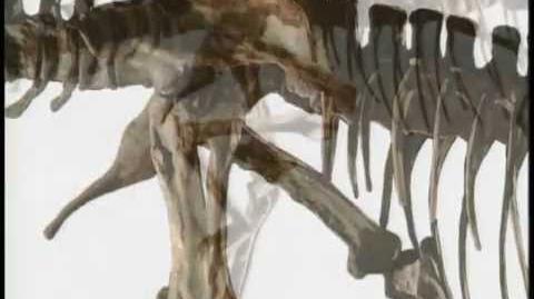 Eyewitness - Dinosaur pt. 1-0