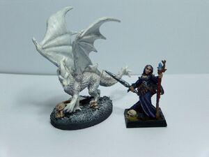 White or ice dragonHPIM0892